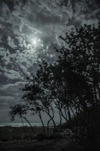 "Jeremy Green  ""Earth Night"" 04/22/16"